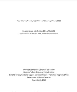 cover image of Homeless System Overview report